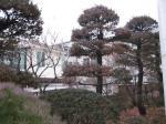2017타경11002 - 서울중앙 [주택] 서울특별시 종로구 청운동 53-57 - 대한법률부동산연구소