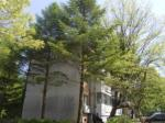 2018타경9411 - 의정부지법 [연립] 경기도 동두천시  삼육사로 1193, 1동 3층301호 (광암동,광암동미군연립주택) - 신세계경매투자㈜