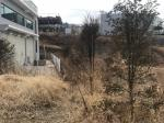 2018타경3303 - 수원지법 [임야] 경기도 용인시 처인구 양지면 주북리 167-1 - 부동산미래