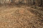 2018타경4702 - 수원지법 [전] 경기도 화성시 팔탄면 고주리 208-1 - 대한법률부동산연구소