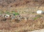 2017타경9102 - 여주지원 [임야] 경기도 양평군 강하면 성덕리 산6-12 - 신세계경매투자㈜
