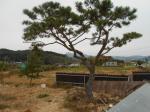 2017타경8383 - 서산지원 [농사시설] 충청남도 서산시 해미면 관터로 15 (1동) - 대한법률부동산연구소