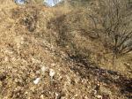 2017타경3029 - 밀양지원 [대지] 경상남도 밀양시 삼랑진읍 삼랑리 691-5 - 부동산미래