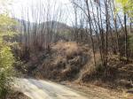 2017타경3623 - 밀양지원 [임야] 경상남도 밀양시 부북면 오례리 382-7 - 부동산미래