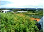 2016타경4304 - 목포지원 [도로] 전라남도 함평군 손불면 궁산리 111-11 - 대한법률부동산연구소