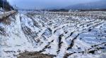 2018타경20129 - 남원지원 [답] 전라북도 남원시 송동면 두신리 878-5 - 부동산미래