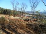 2017타경15665 - 고양지원 [임야] 경기도 고양시 일산동구 사리현동  642-103 - 부동산미래